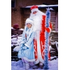Дед Мороз и Снегурочка - работают профессионалы!